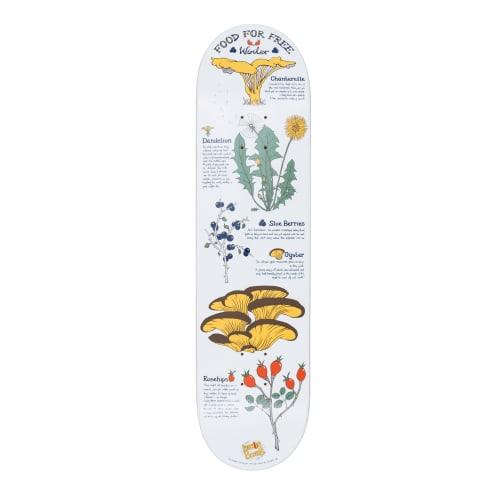 """Drawing Boards Foraging Winter Deck - 8.0"""""""