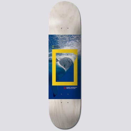 Element Skateboards X Nat Geo Greyson 'Shark' Skateboard Deck 8.25