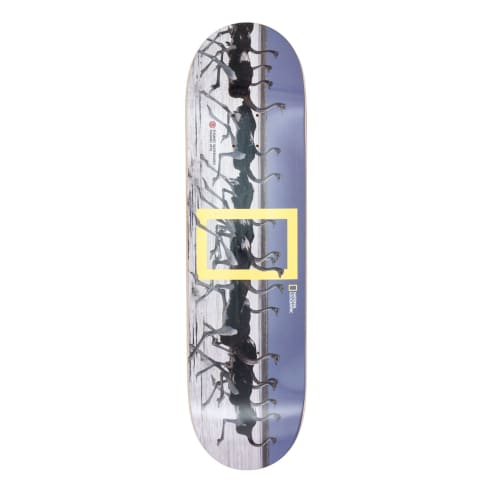 Element Nat Geo Ostrich Madars Apse Deck - 8.38""