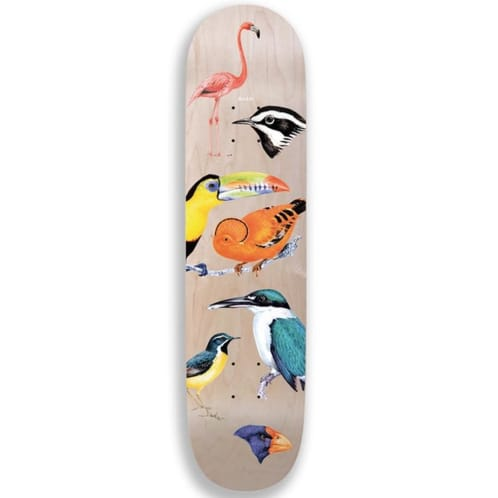 Quasi Birdhouse Three Skateboard Deck 8.5""