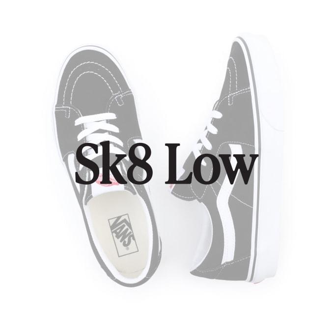 Vans Buyers Guide 2021. Vans Skate-Low - 5