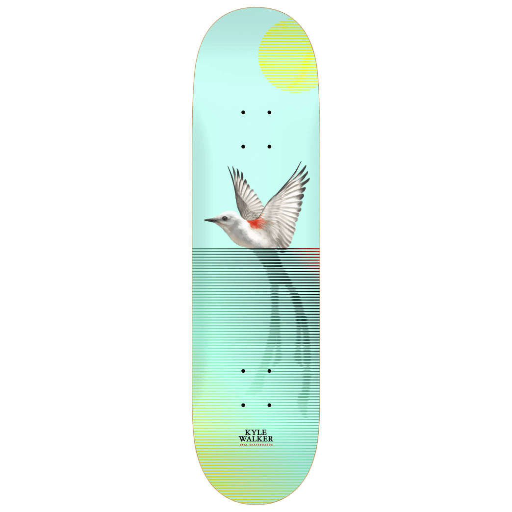 Real Kyle Segment II Deck 8.5 | Deck by Real Skateboards 1