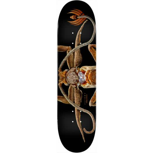 """Powell- Biss Marion Moth Flight Deck (8.25"""")   Deck by Powell Peralta 1"""