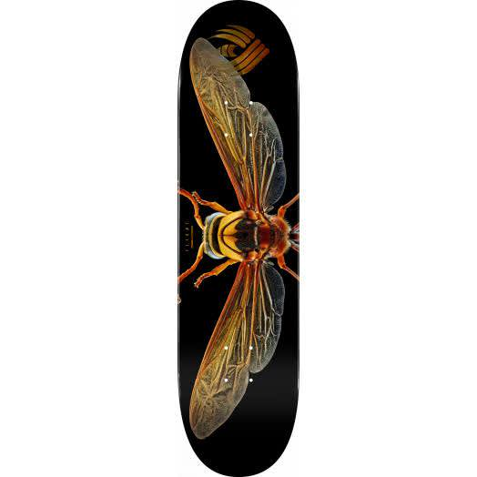 """Powell- Biss Potter Wasp Flight Deck (8"""") 