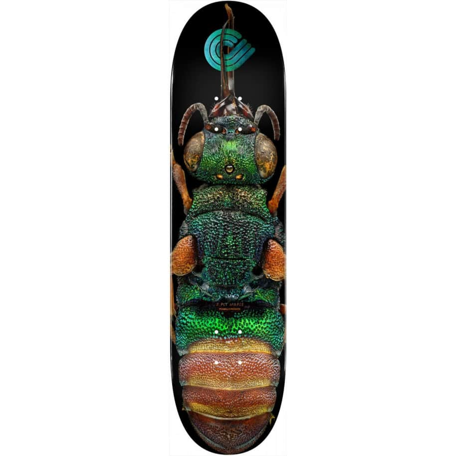 """Powell 