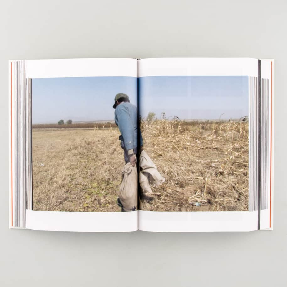The Walking Eye | Book by Roma Publications 6