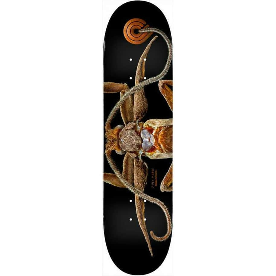 """Powell Peralta BISS Flight 243 Marion Moth Deck 8.25""""   Deck by Powell Peralta 1"""