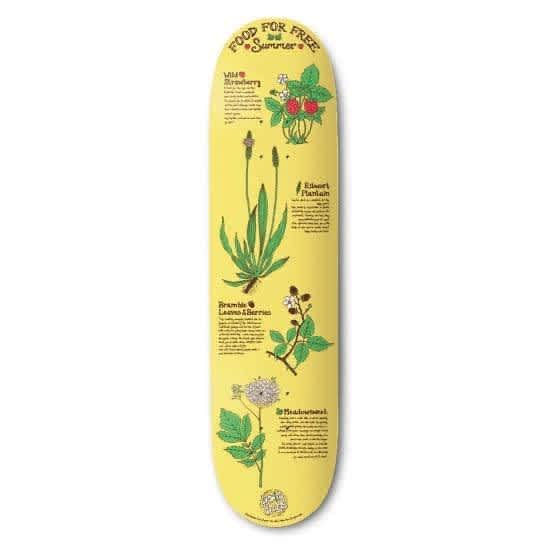 """Drawing Boards - Summer Deck - 8.0"""" 
