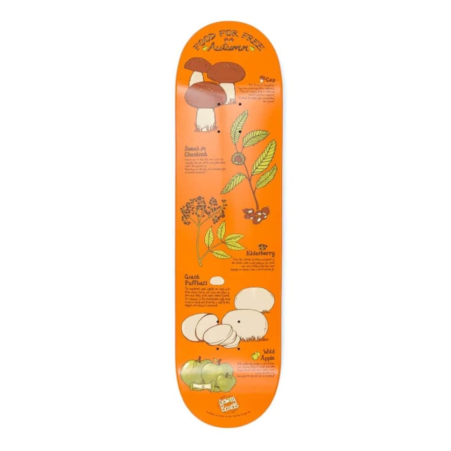 """Drawing Boards - Foraging Autumn Deck - 8.375""""   Deck by The Drawing Boards 1"""