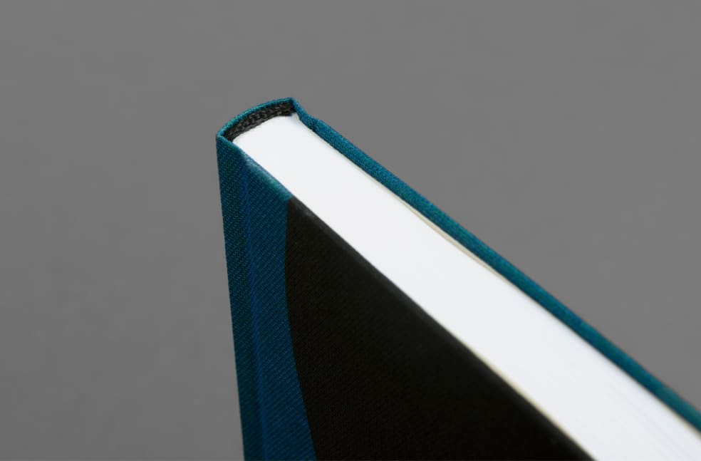 Jet Swan – Material   Book by Loose Joints 2