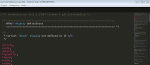 Screenshot Sublime Text Editor