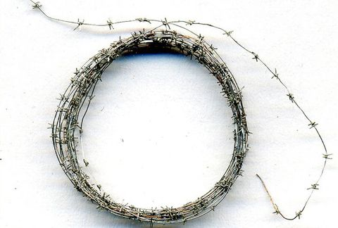 Barbed wire 1000 mm (metall)