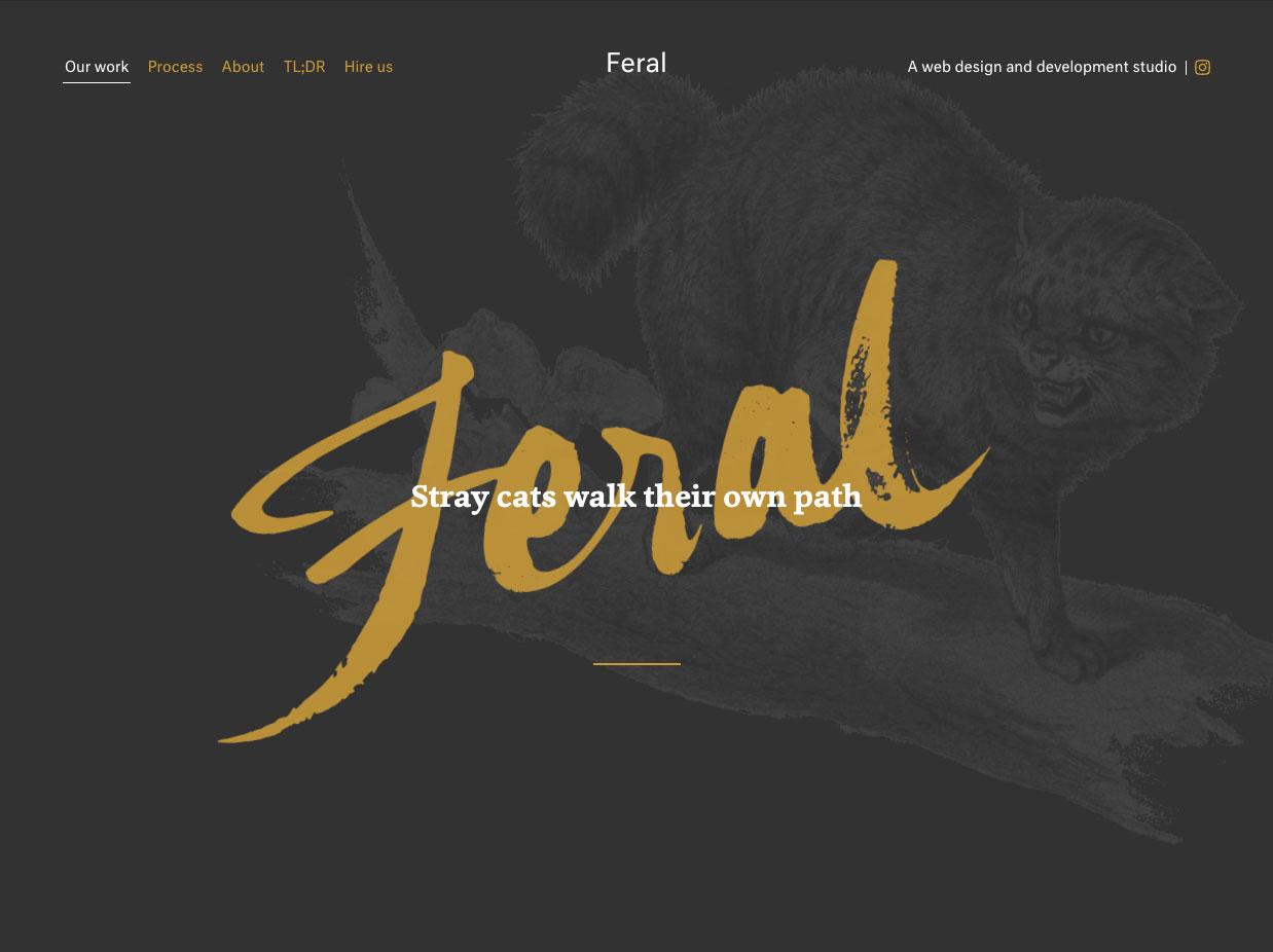 Projeto - Feral