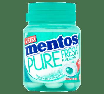 Mentos Gum Pure Fresh - Wintergreen pot