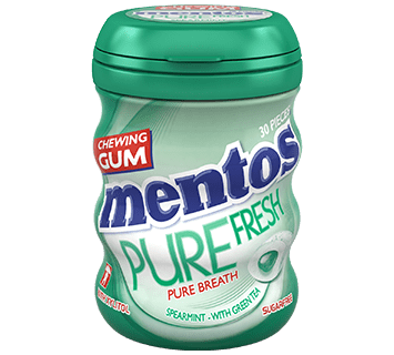Mentos Gum Pure Fresh Spearmint Medium