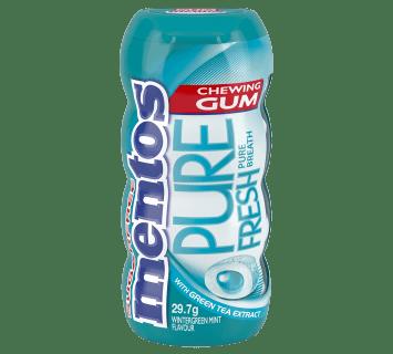 Mentos Pure Fresh Gum Wintergreen Pocket Bottle