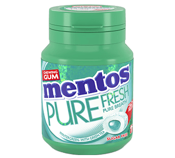 Mentos Gum Pure Fresh - Wintergreen pot