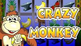 Crazy-Monkey_slot1