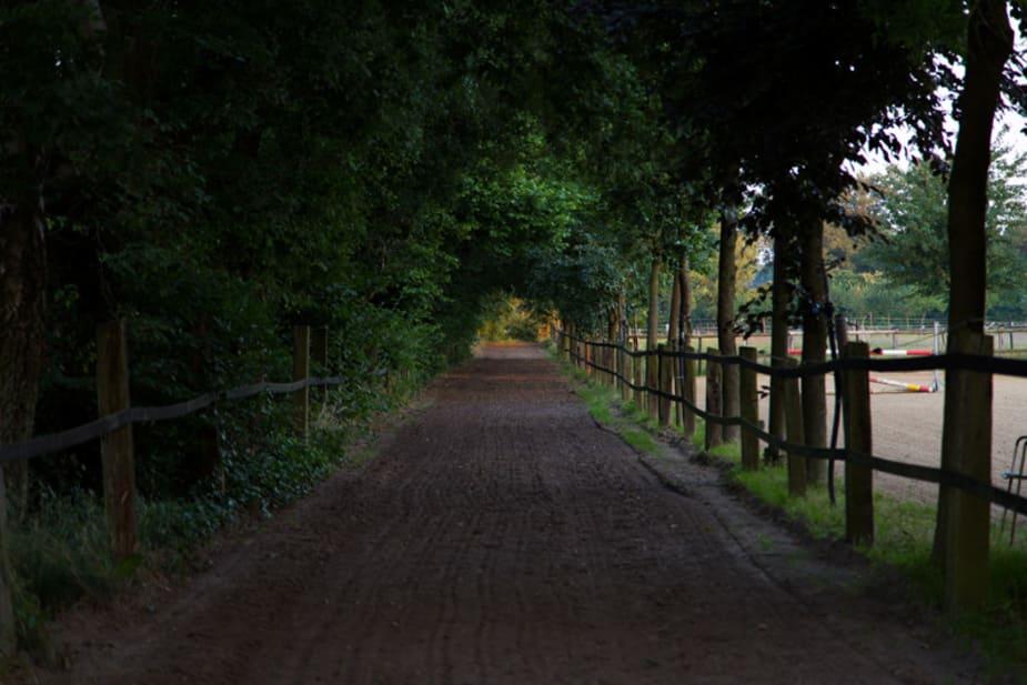 Foto der Rennbahn