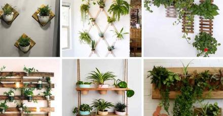 Hướng dẫn trang trí ban công chung cư đơn giản nhưng ấn tượng