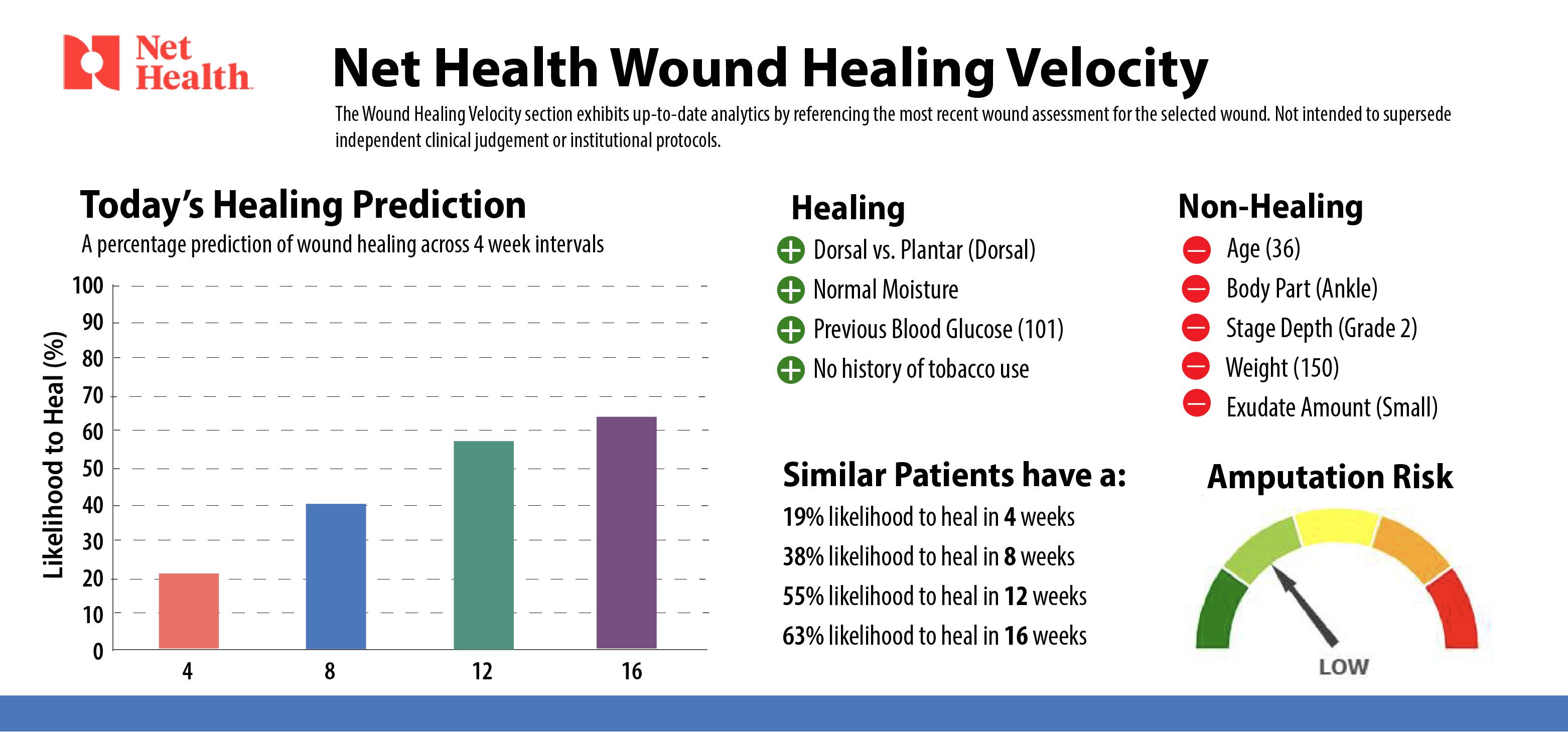 Net Health header image