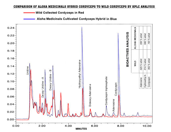 cordyceps comparison chart
