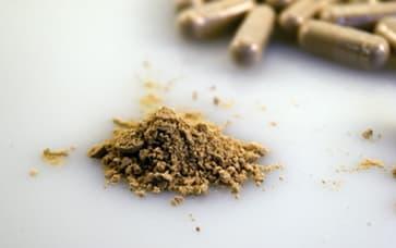 Mushroom Powder Capsules