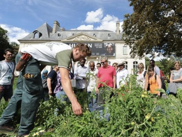 team-building-team-building-permaculture-dans-paris-une-experience-a-decouvrir