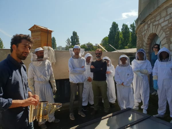 Team-Building-team-building-d-apiculture-entre-collegues-sur-les-toits-de-paris