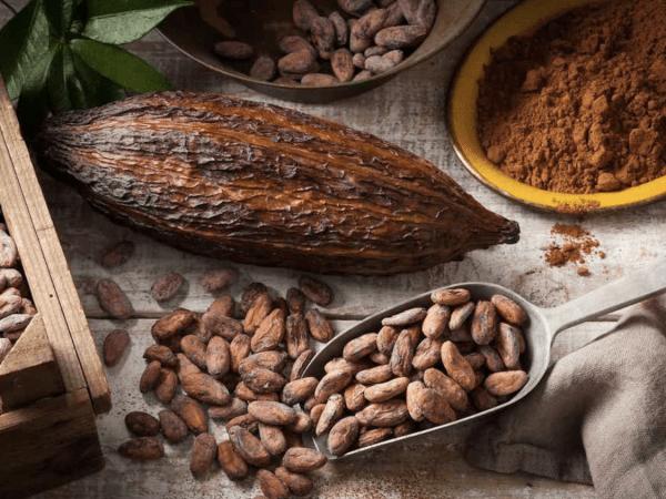 Team-Building-atelier-degustation-de-chocolat-a-paris-pour-entreprise