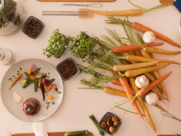 Team-Building-Degustation-dun-repas-gastronomique-aux-insectes-avec-votre-equipe