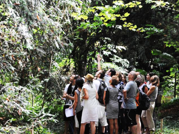 team-building-Team-Building-decouverte-de-la-biodiversite-dun-Domaine-a-Paris