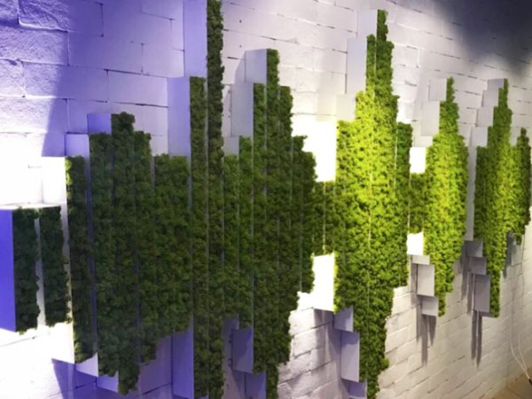 team-building-Team-Building-atelier-creation-dun-mur-vegetal-a-Paris