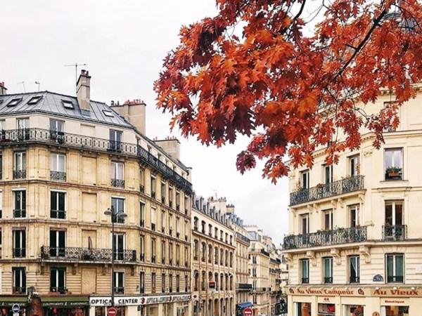 Team-Building-Team-building-Minuit-a-Paris-hommage-a-la-capitale-en-equipe-a-Paris