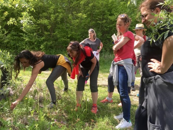 Team-Building-Reconnexion-a-la-nature-garantie-grace-a-cette-activite-ludique