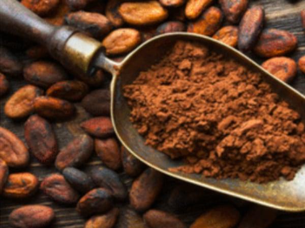 team-building-Team-building-atelier-histoire-et-degustation-de-chocolat-a-distance