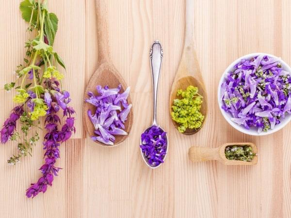 Team-Building-Team-building-degustation-de-fleurs-comestibles-en-visio