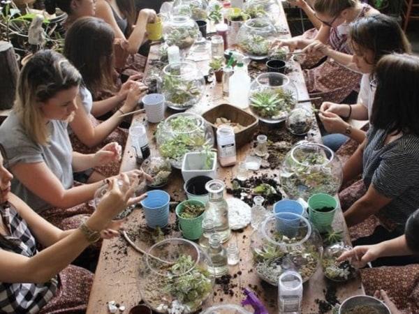 Team-Building-team-building-terrarium-a-paris-entre-collegues
