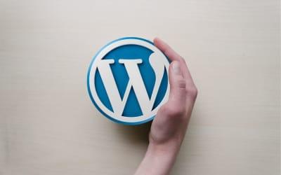 WordPress: webové stránky pro většinu firem, 5 výhod a 6 nevýhod WordPressu