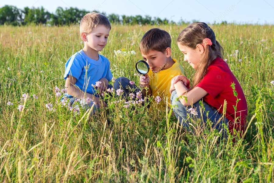 STEM education raises curiosity
