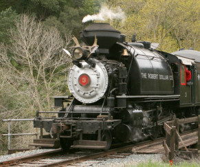 Niles Canyon Railway Excursion (Fremont)