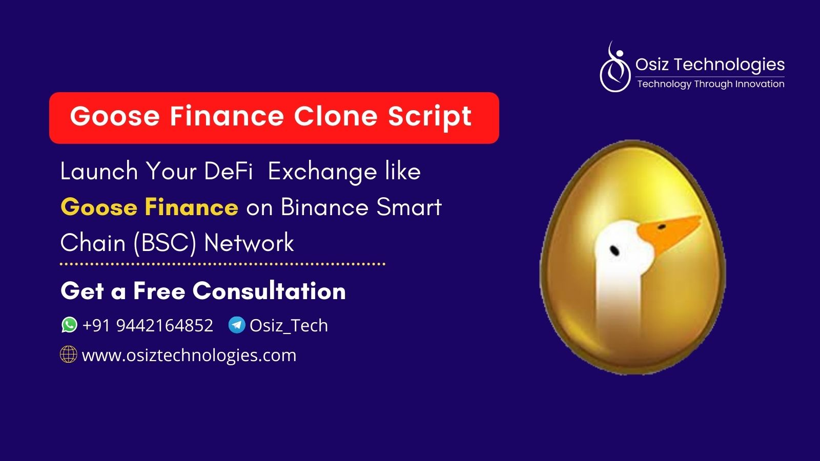 Goose Finance Clone Script - To Build DeFi Exchange Like Goose Finance On Binance Smart Chain (BSC)