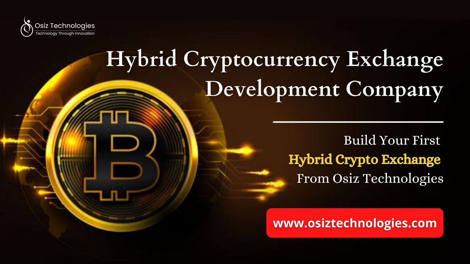 Hybrid Cryptocurrency Exchange Development Company- Build Your First Hybrid Crypto Exchange And Stand Out Unique From Others