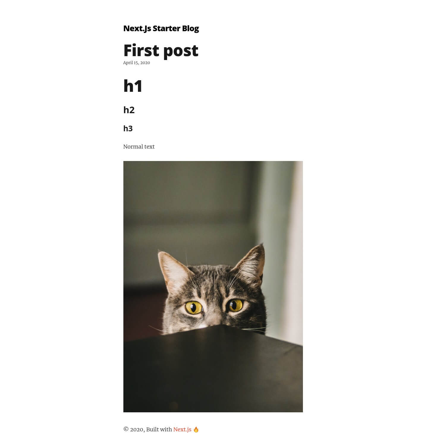 Blog post with cat image