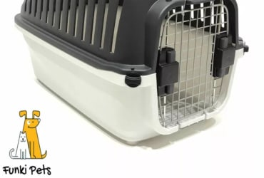 Classic Large Pet Carrier, Perfect for Dogs, Cats, Birds