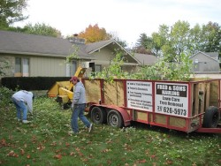Yard Waste Collection - Fred & Son's - Indianapolis IN