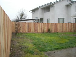 RS Handyman - Fence