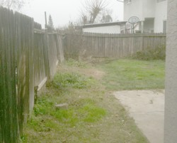 RS Handyman - Old Fence Before