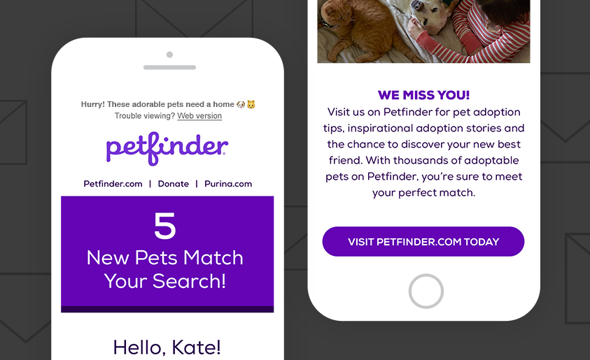 Email mockups for Petfinder on two white iPhones