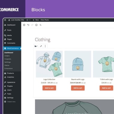 Best Email Marketing Practices for WooCommerce